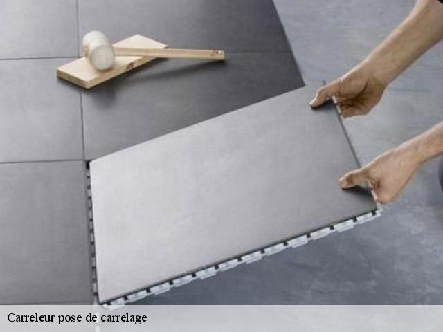 Carreleur pose de carrelage