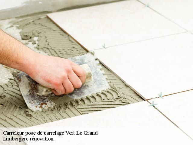 Carreleur pose de carrelage  vert-le-grand-91810 Limbergere rénovation